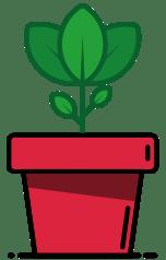 Desarrollo web Jaén